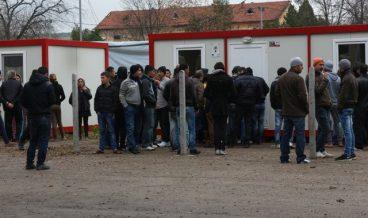 Бежанци снимка: БГНЕС