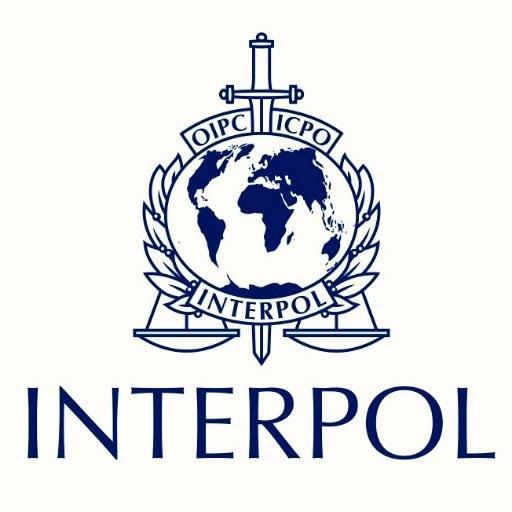 Интерпол