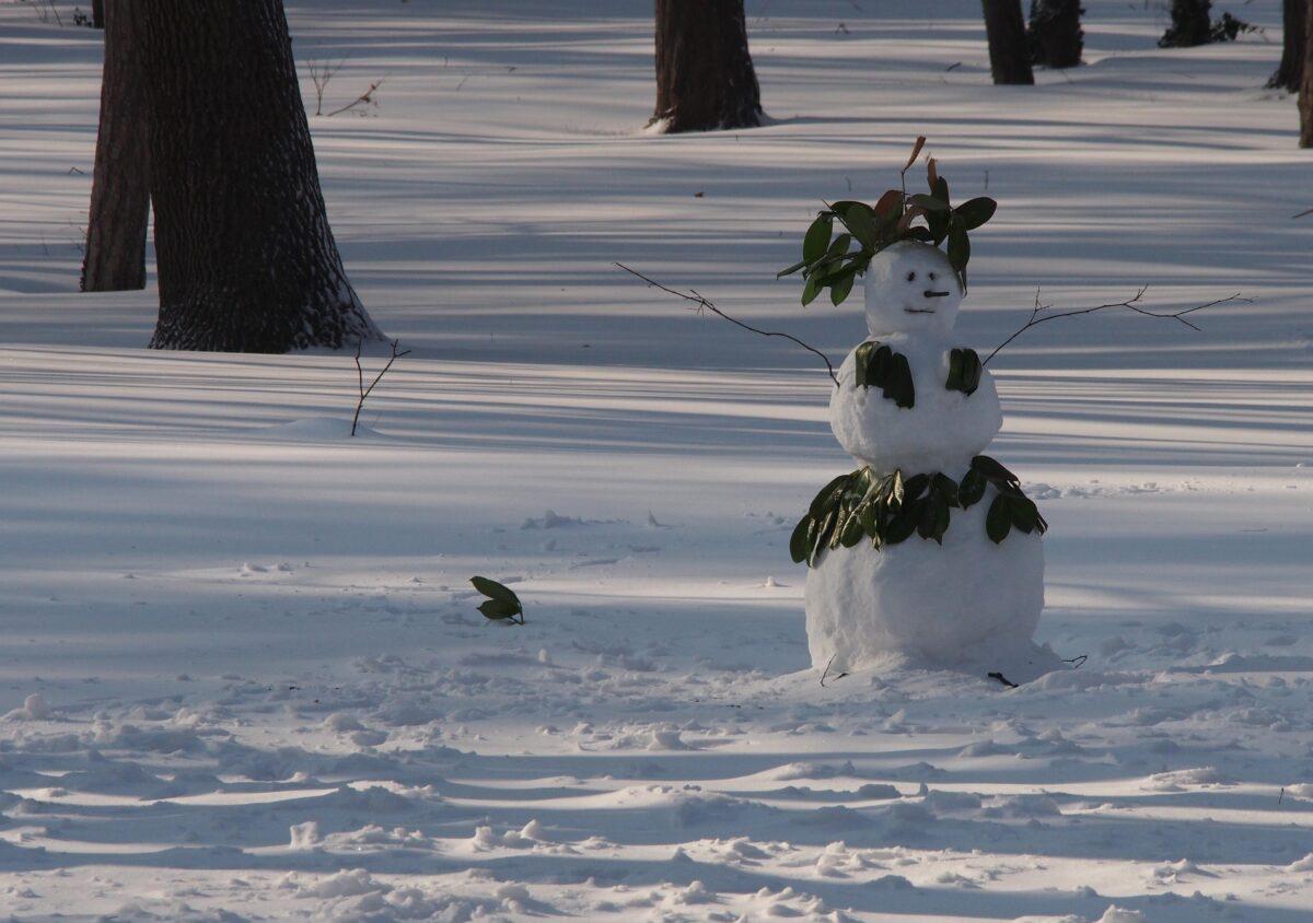 Варна, зима, сняг