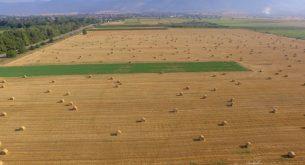 нива, земеделие