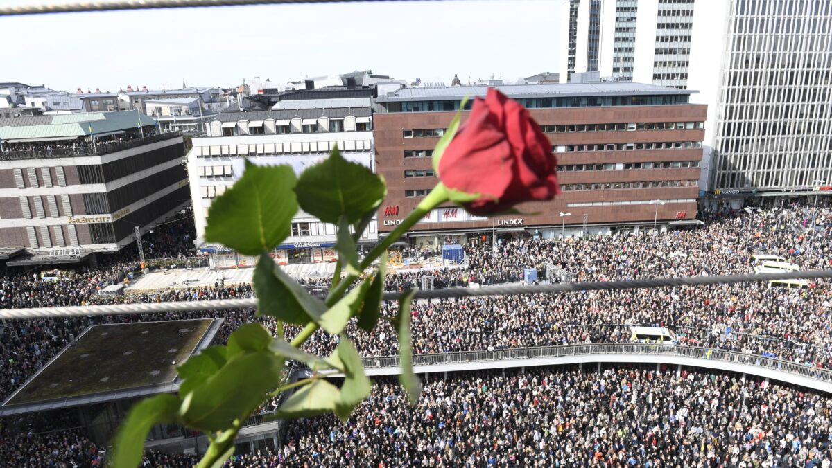 epa05899209 A rose in shown as people gathered in Sergels Torg, central Stockholm, Sweden, 09 April 2017 for a 'Lovefest' vigil against terrorism following the terror attack on Drottninggatan, central Stockholm. A hijacked beer truck ploughed into pedestrians on Drottninggatan and crashed into Ahlens department store, killing four people, injuring 15 others late 07 April 2017. EPA/MAJA SUSLIN SWEDEN OUT
