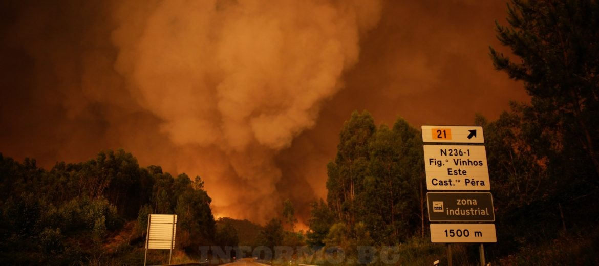 epa06034319 A smoke rises abobe trees during a forest fire in Pedrogao Grande, Leiria District, Center of Portugal, 17 June 2017. About 180 firemen, 52 land vehicles and 2 planes are fighting to extinguish the fire.  EPA/PAULO CUNHA