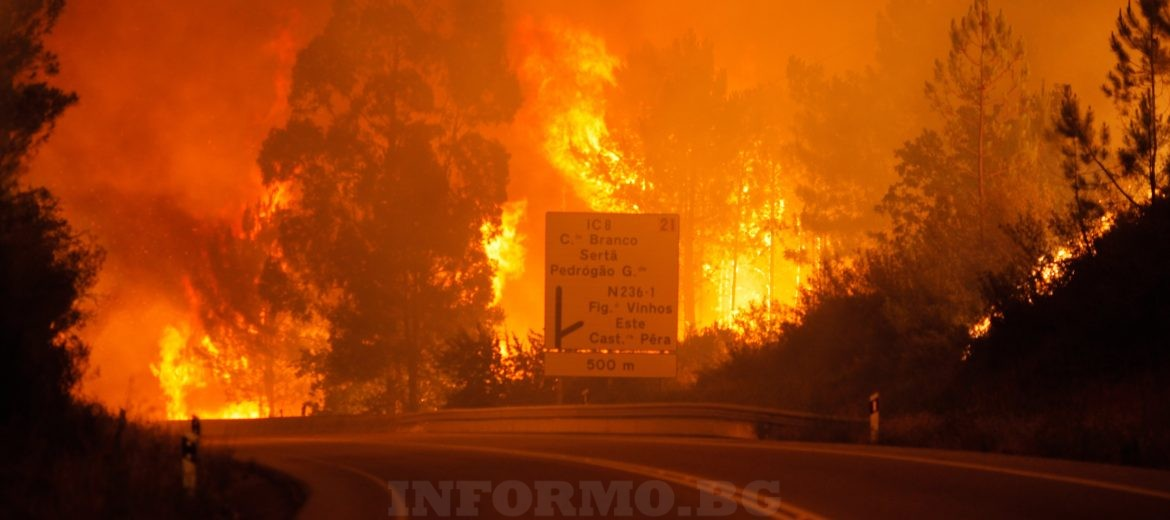 epa06034348 Flames rise during a forest fire in Pedrogao Grande, Leiria District, Center of Portugal, 17 June 2017. About 180 firemen, 52 land vehicles and 2 planes are fighting to extinguish the fire.  EPA/PAULO CUNHA