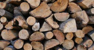 Двама души са задържани за незаконен добив на дърва