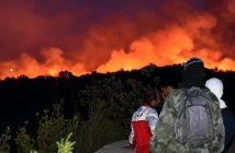 снимка: EPA/БГНЕС