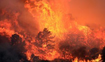 fire пожар