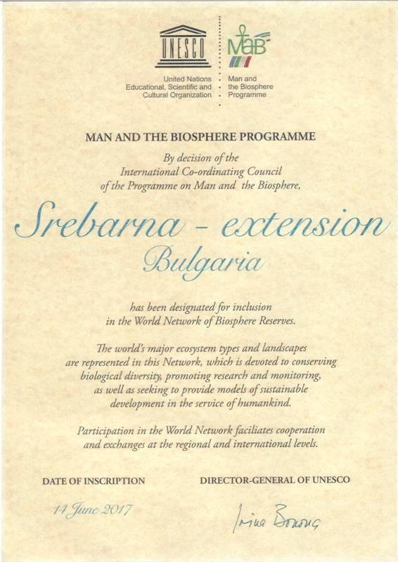 сертификат_Сребърна