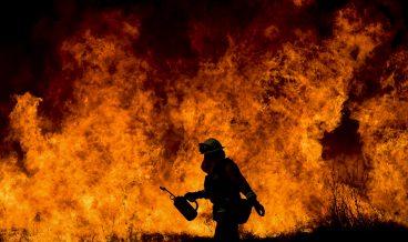 снимка: EPA/BGNES
