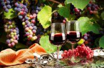 Вино грозде Трифон Зарезан