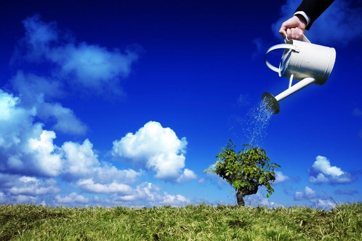 снимка: Bloglet.com