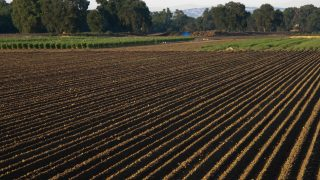 земеделски земи