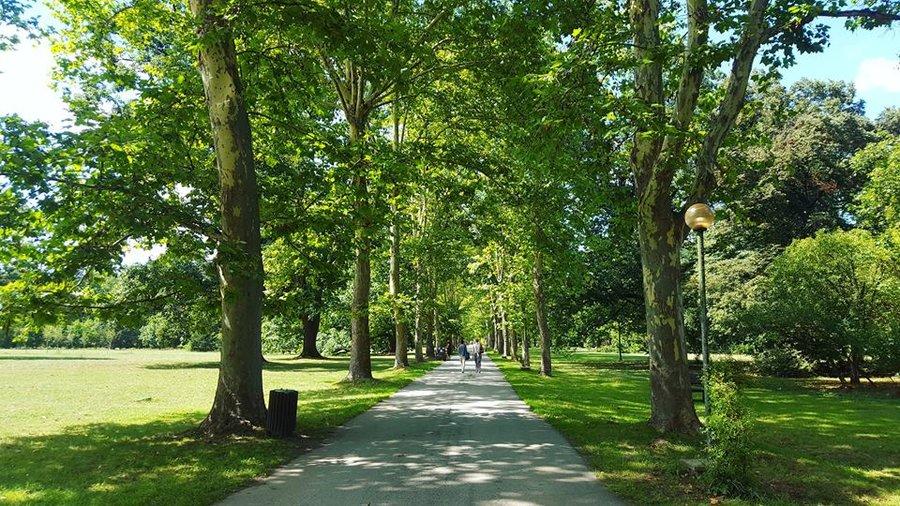 парк, парк-музей Врана