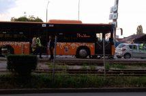 avtobus-stalb