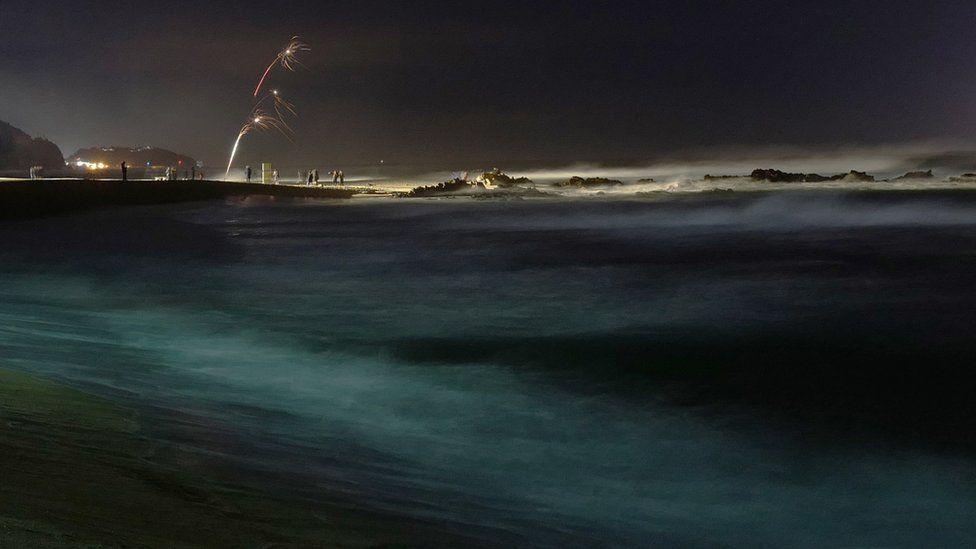 Каннън, Южна Корея, снимка: bbc.com