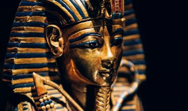TUT-EXHIBITION-Coffinette-1-Credit-IMG
