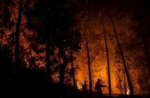 снимка: news.sky.com