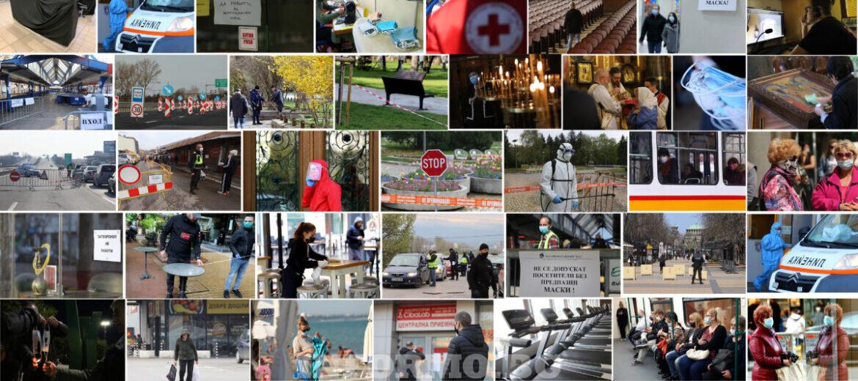 Една година с COVID-19 в България