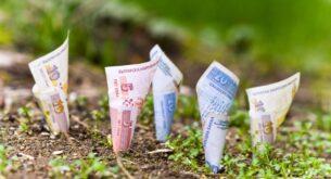 Само до 17 декември: Промоция вдига цената на земята с 30 лв. на дка